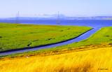 San Mateo County Misc. Environments
