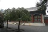 beijing-palais_ete-0220061124.JPG