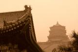 beijing-palais_ete-0820061124.JPG
