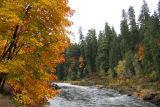 AutumnUmpqua.jpg