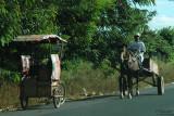 Horse-n-wagon