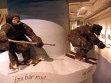 The Ski Museum, Umeå