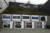 Art in Akureyri