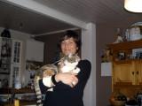My Reykjavík hosts' cat