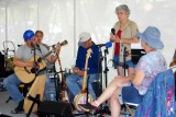 Merv Collins, finger style guitar, Strawberry Festival, Long Grove