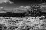 B-and-W-Blackmountains Walesjpg