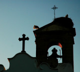 Cropped last light Faro.jpg