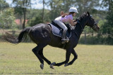 Galloping Sam