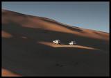 Desert driving - Libya 2006