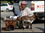 Goats for sale at Salalah City centre market