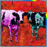 Two Cows In The Fauve Style