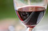 Wine Beer Cocktails
