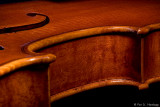 Violin 8