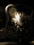 Cabin mirror 0579