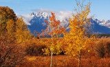 Fall in the Grand Tetons and Yellowstone
