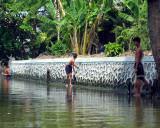 Boys Net Fishing in Klong in Pathum Thai