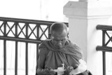 Monk at the Ferry Terminal