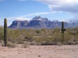 Superstition and Saguaros
