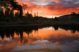 American River Sunset