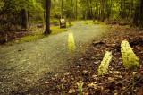6/29/07 - Limberlost Trail