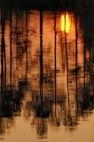 9/8/07 - Sunrise on Golden Pond