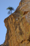 10/2/07 - Alone on the Side of Kings Canyon (Ed)
