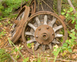 zP1000826 Resting place for tired wheels.jpg
