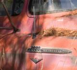 zzzzP1020118 Old truck - f11 - tripod - crop-3 - size change.jpg