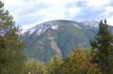 zP1020123 Mountain trees - tripod - large aperture.jpg