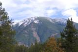 zP1020124 Mountain trees - tripod - f11 aperture.jpg