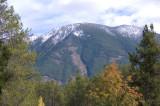 zP1020126 Mountain trees - tripod - large aperture.jpg