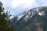 zP1020129 Mountain trees - tripod - f11 aperture.jpg