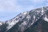 zP1020132 Mountain trees - tripod - f11 aperture.jpg