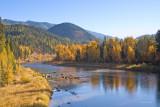 z_MG_4692 Middle Fork of Flathead River along Glacier National Park.jpg
