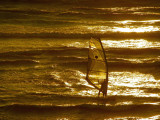 Windsurfing over golden water