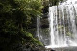 Russel Falls, Mt Field National Park 4