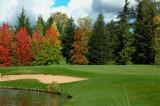 golfparkB.jpg