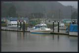 Charter Fish Boats.jpg