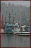 Blue  White Fish Boats.jpg