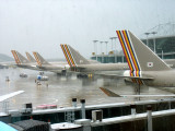 Set of Asiana Airlines aircrafts at Incheon Airport