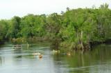 02 -  Yellow River Kayak Outing - Northwest Florida