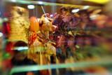 2007 - Chinatown - DS070223141010