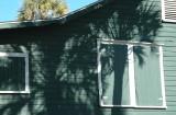 green house with palmetto shadows.jpg