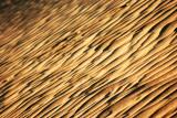 Texture of Desert