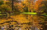 Autumn in Frederiksberg Have 5