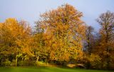 Autumn in Frederiksberg Have 4