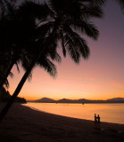 Dunk Island palm tree sunset #1