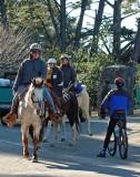 Horseback in Point Reyes Station