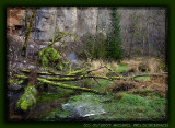 Wutach Canyon, Black Forest