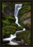 Waterfall in Triberg, Black Forest (II)